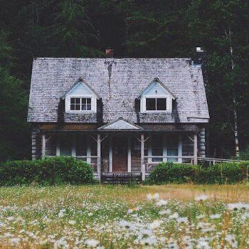 Chercher un nouveau chez-soi, Blog du Dimanche