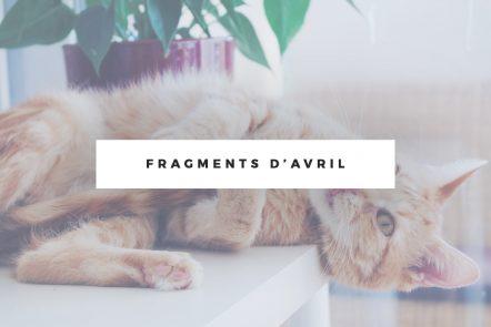 fragments-avrils
