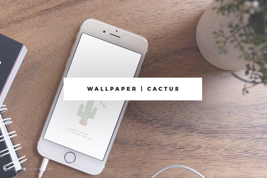 Wallpaper | Dans la vie, il y a des cactus !