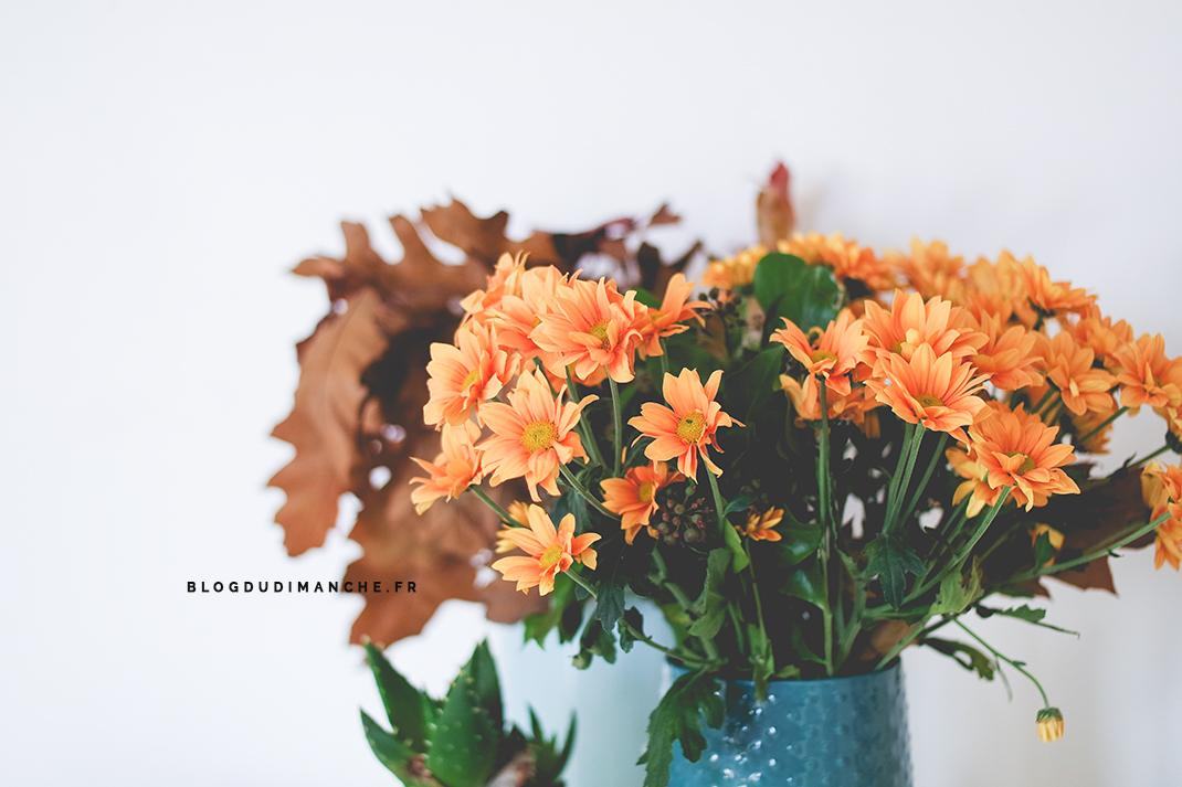 daily-life-novembre-16