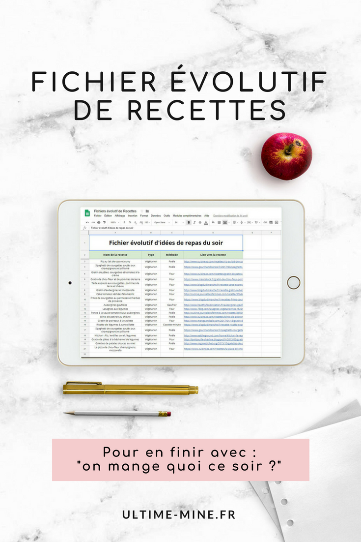 fichier-evolutif-recettes-pin